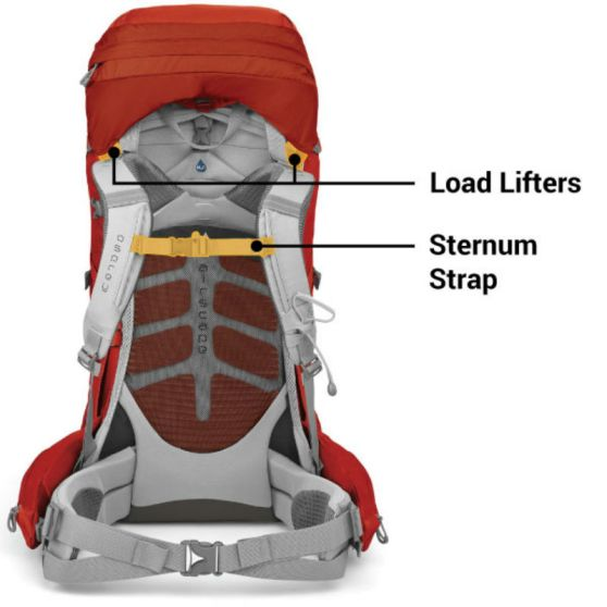 Weight distribution of backpack